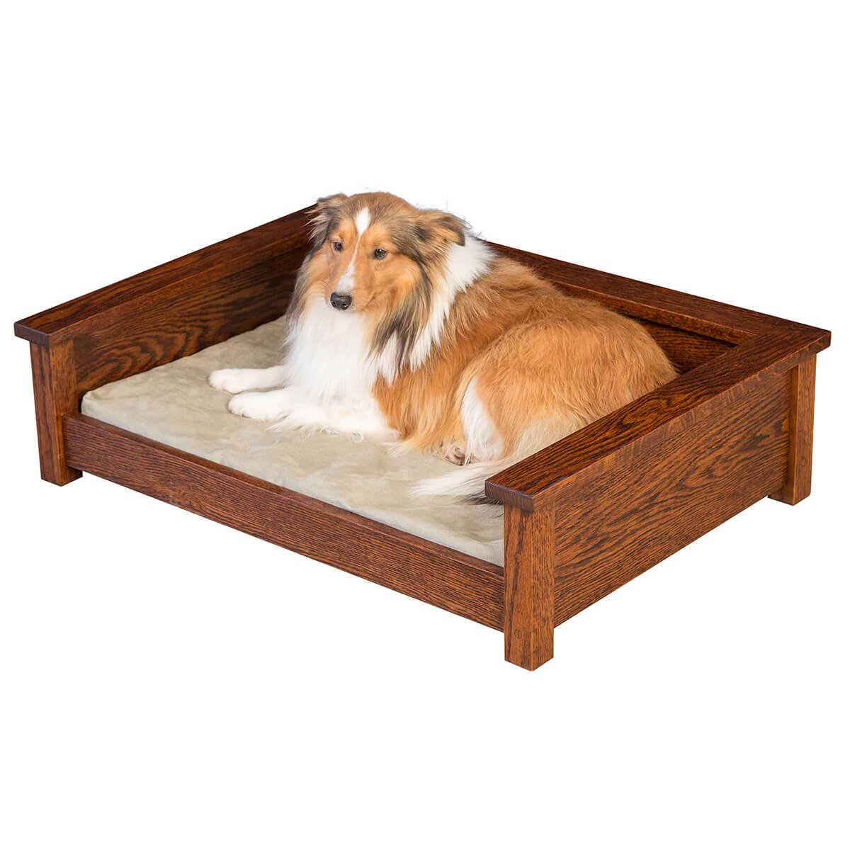 specialty furniture pet